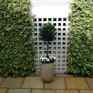 Courtyard Minimalist Contemporary Garden Design
