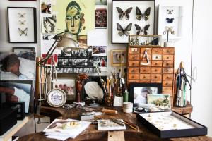 Create Cabinet Curiosities Your Home