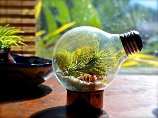 Creative Bulb Ideas Decorating Ornament Eden
