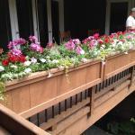 Deck Rail Planter Boxes Planters Decoratorist 139369