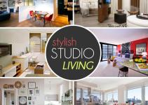Design Lover Guide Stylish Studio Living2014