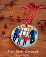 Diy Birch Ornaments Fridgeview