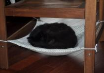 Diy Cat Chair Hammock Petdiys