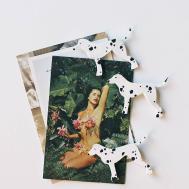 Diy Dalmatian Magnets Homemadebanana