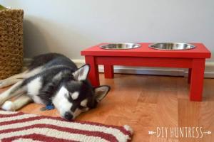 Diy Dog Bowl Stand Huntress