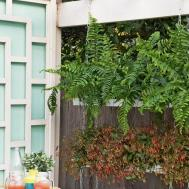 Diy Hanging Garden Australian Handyman Magazine
