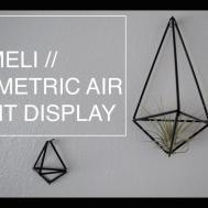 Diy Himmeli Geometric Air Plant Display