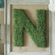 Diy Moss Monogrammed Letter Frame Hometalk