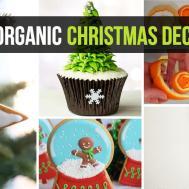 Diy Organic Christmas Decorations Make Your