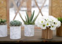 Diy Paint Can Planter Succulents Espoma