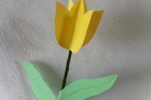 Diy Paper Tulips Flower Decoration Ideas Createsie