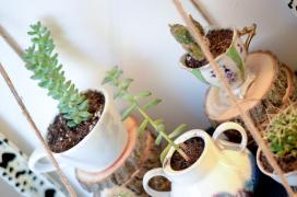Diy Teacup Garden Book Shelf See More