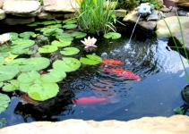 Diy Waterfall Pond Ideas Water Gardens Goodhomez