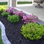 Easy Landscaping Ideas Beginners Mybktouch