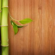 Eco Friendly Flooring Options Floor Coverings