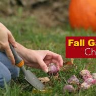 Fall Garden Ideas Have Check List