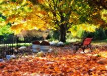 Fall Garden Tips Gardening Ideas