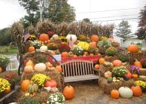 Fall New England Pumpkins Apples Mums More