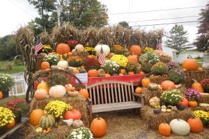 Fall New England Pumpkins Apples Mums More