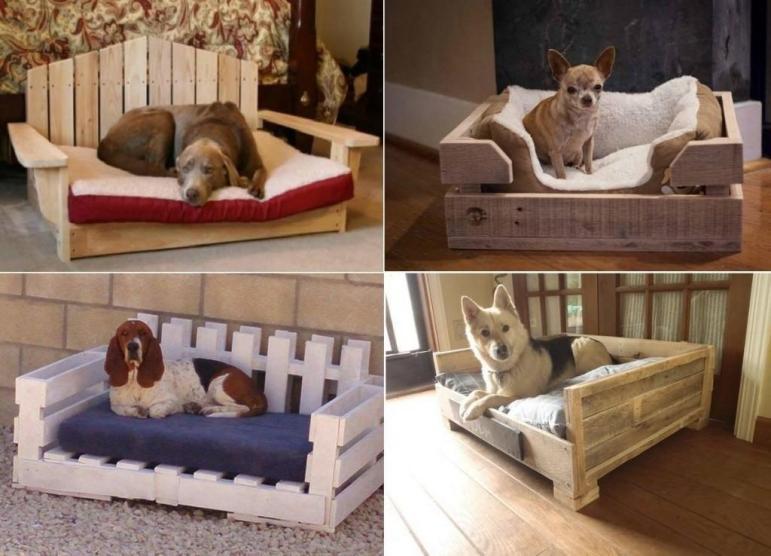 Fantastic Pet Bed Ideas