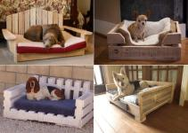 Fantastic Pet Bed Ideas