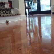 Flooring Breathtaking Living Room Decor Hardwood