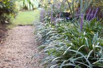 Flowering Plants Damp Shade Gardenersworld