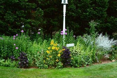 Flowers Nature Garden Flower Beds