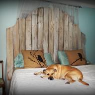 Furniture Cool Bed Headboards Design Modern