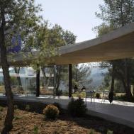 Glass Encased Circular Solo House Snakes Through Spanish