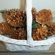 Gold Pine Cones Cone Painted
