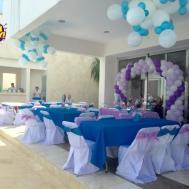 Gorgeous Interior Frozen Med Party Decoration Ideas