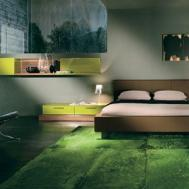 Green Accent Rug Bedroom Decor Decorating Ideas