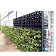 Green Wall System Cfi Wp01