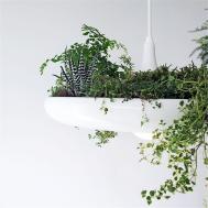 Hanging Babylon Garden Plant Drop Light Balcony Pendant