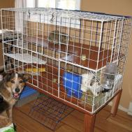 Homemade Rabbit Cage Made Few Boards