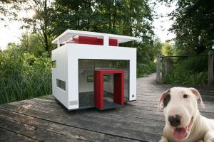 Inspiring Ideas Build Your Own Dog House