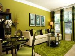 Interior Designs Lime Green Room Ideas 006 Upgrade House
