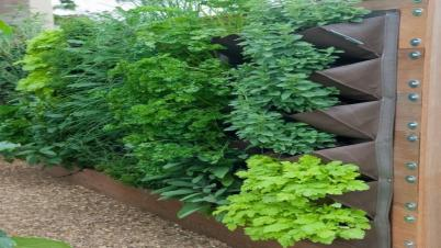 Kitchen Wall Designs Diy Indoor Vertical Garden