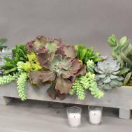 Long Succulent Arrangement