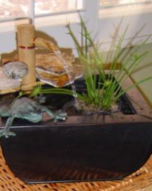 Making Pond Pot