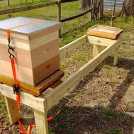 Metropolis Propolis Episode1 Elevated Hive Stand