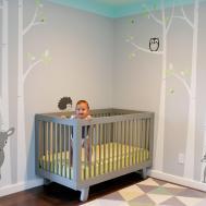 Modern Baby Boy Nursery Themes Thenurseries