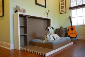 Modern Indoor Pet Room Ideas Cat Dog