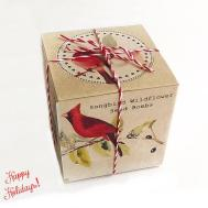 Mom Gift Songbird Wildflower Seed Bombs Boxed Bird