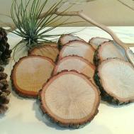 Natural Oak Tree Slices Crafts Save Dates
