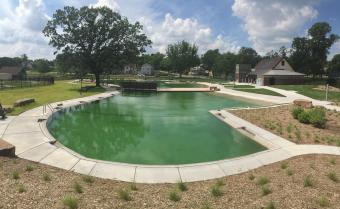 Natural Swimming Pools Laughing Waters Inc