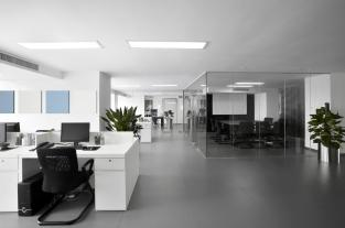 Open Plan Office Problem Desk Partitions