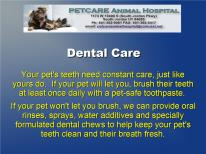 Petcare Pet Care Tips Animal Hospital