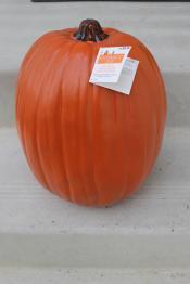 Pick Your Pumpkin Quick Diy Planter Joy Our